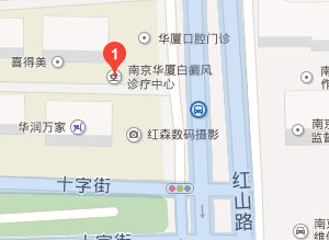 南京华厦白癜风诊疗中心来院路线